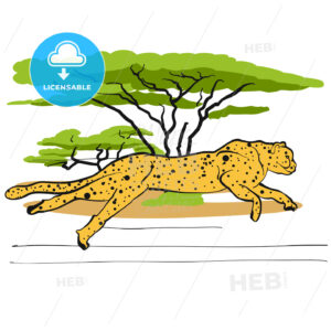 Cheetah in savannah - Hebstreits