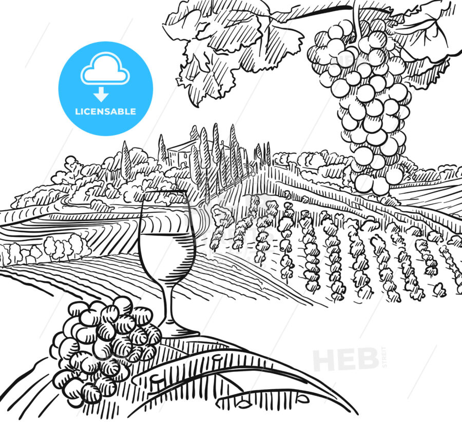 Vineyard Composition with Grapes and Glass of Vine - HEBSTREITS