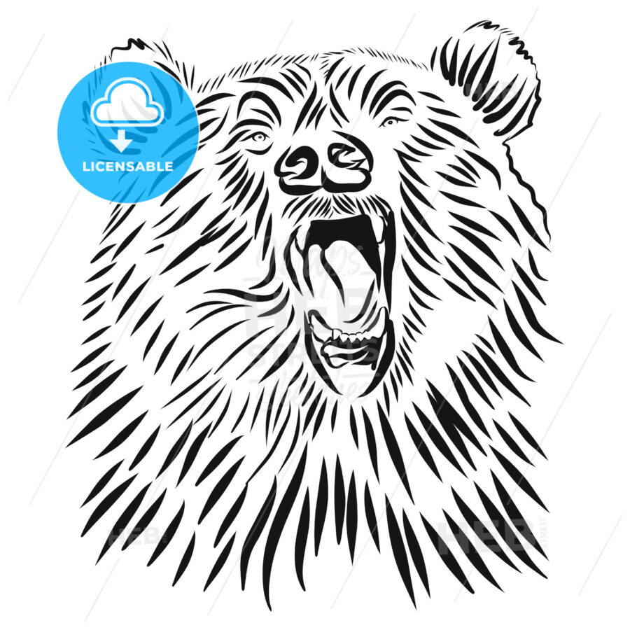 Wild grizzly, Hand drawn vector roaring bear. - Hebstreits
