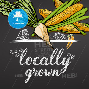 Locally Grown Vegetables Banner - Hebstreits