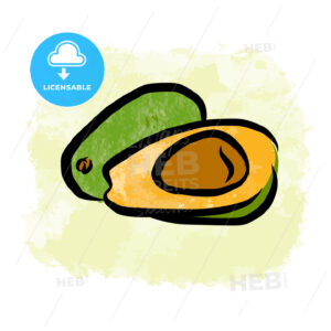 Colored drawing of avocados - HEBSTREITS