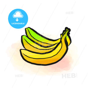 Colored drawing of bananas - HEBSTREITS