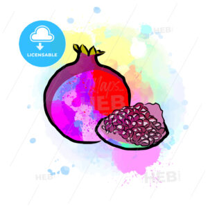 Colored drawing of pomegranate - HEBSTREITS