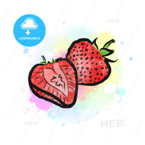 Colored drawing of strawberries - HEBSTREITS