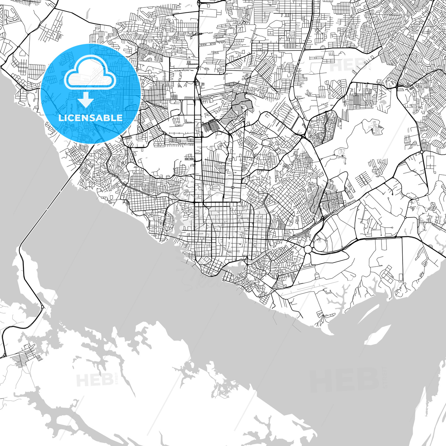 Manaus, Amazonas, Downtown Vector Map - HEBSTREITS