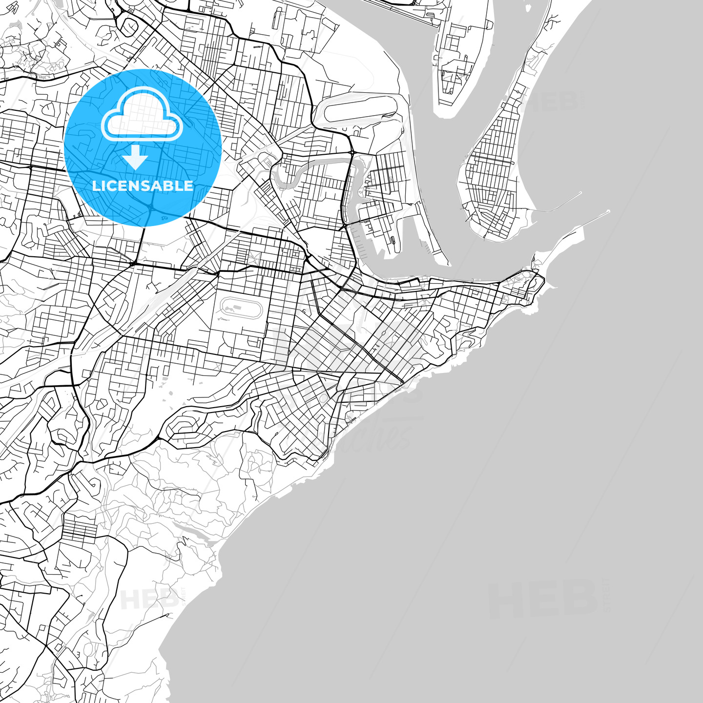 Newcastle, New South Wales – Downtown Vector Map - HEBSTREITS