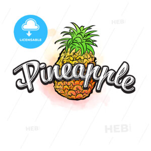 Pineapple colorful label sign - HEBSTREITS