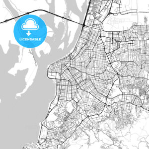 Porto Alegre, Rio Grande do Sul, Downtown Vector Map - HEBSTREITS