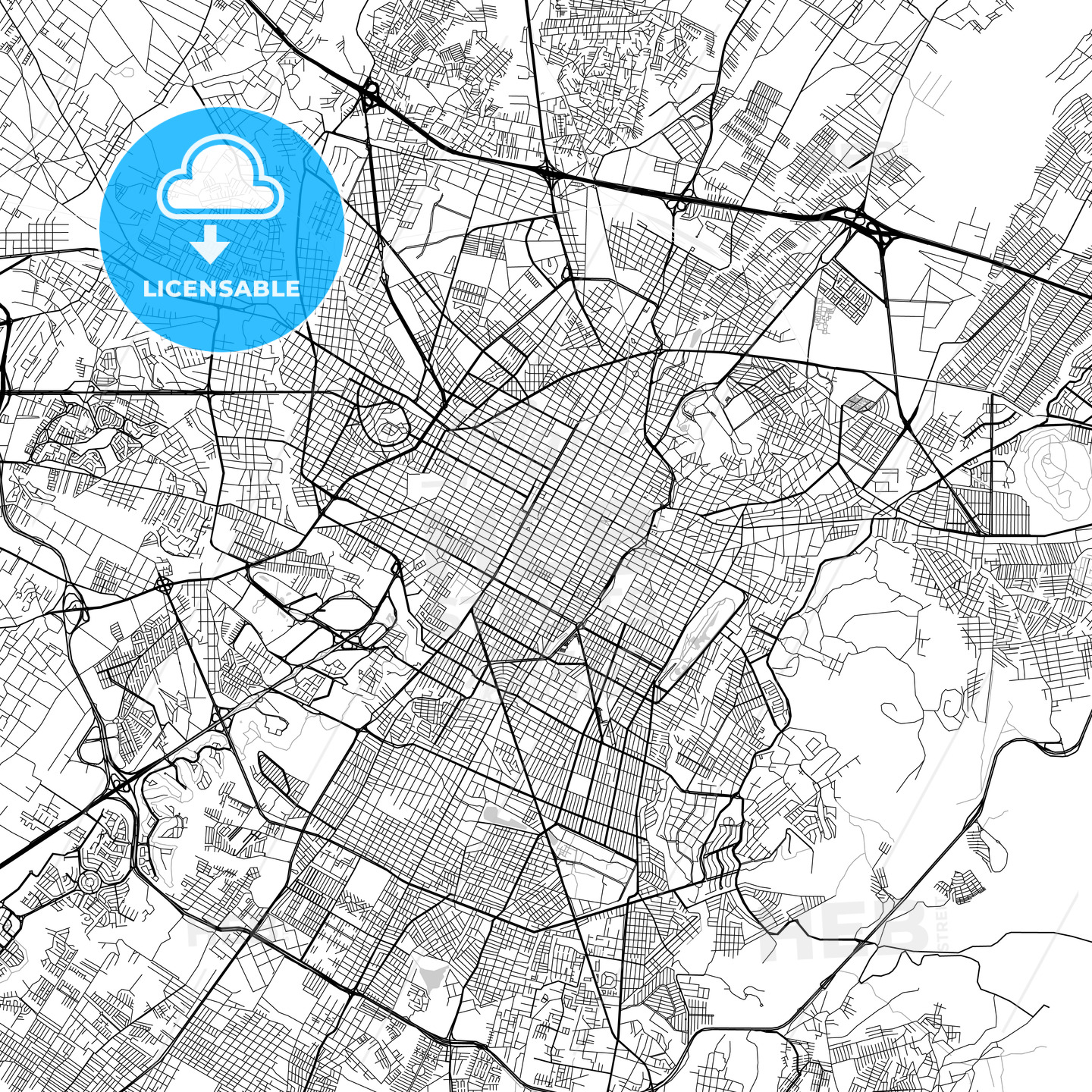 Puebla, Puebla, Downtown Vector Map - HEBSTREITS