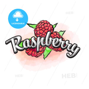 Raspberry colorful label sign - HEBSTREITS