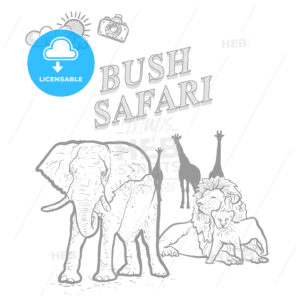 Bush safari travel marketing cover - HEBSTREITS