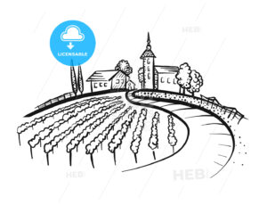 Vineyard Drawing with path and houses on hill - HEBSTREITS
