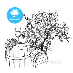 Vine barrel, glass and tree drawing - HEBSTREITS