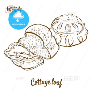 Cottage loaf bread vector drawing - HEBSTREITS Sketches