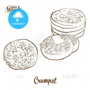 Crumpet bread vector drawing - HEBSTREITS Sketches