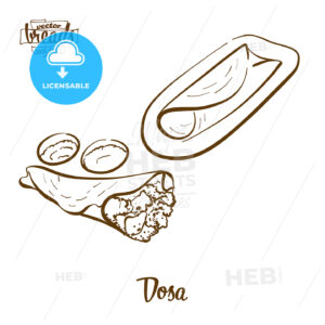Dosa bread vector drawing - HEBSTREITS Sketches