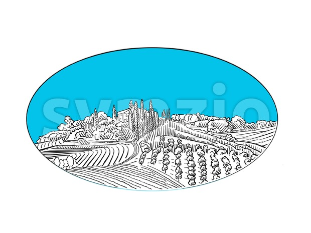 Vineyard landscape label design Stock Vector
