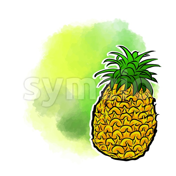 Pineapple Poster Design Background. Stock Vector