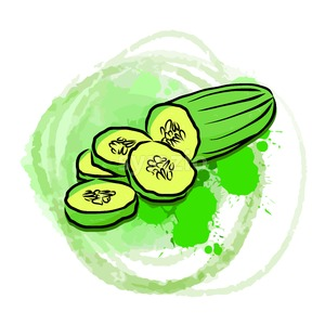 Cucumber on green painted background Stock Vector