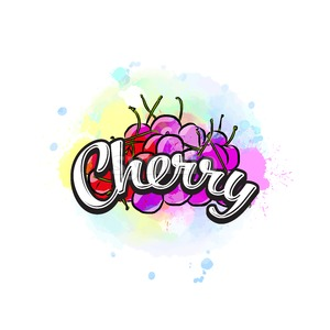 Cherry colorful label sign Stock Vector