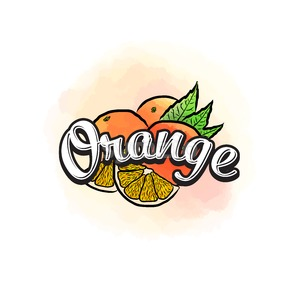 Orange colorful label sign Stock Vector