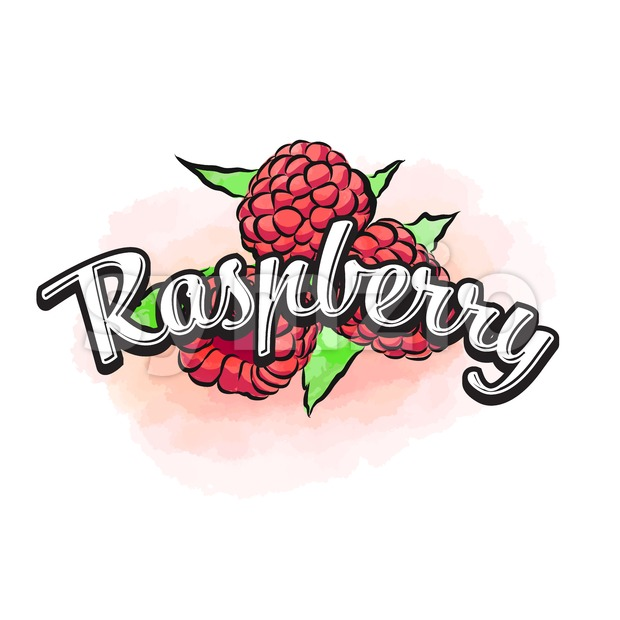Raspberry colorful label sign Stock Vector