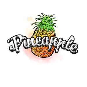 Pineapple colorful label sign Stock Vector