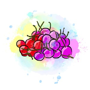 Colored drawing of cherries Stock Vector