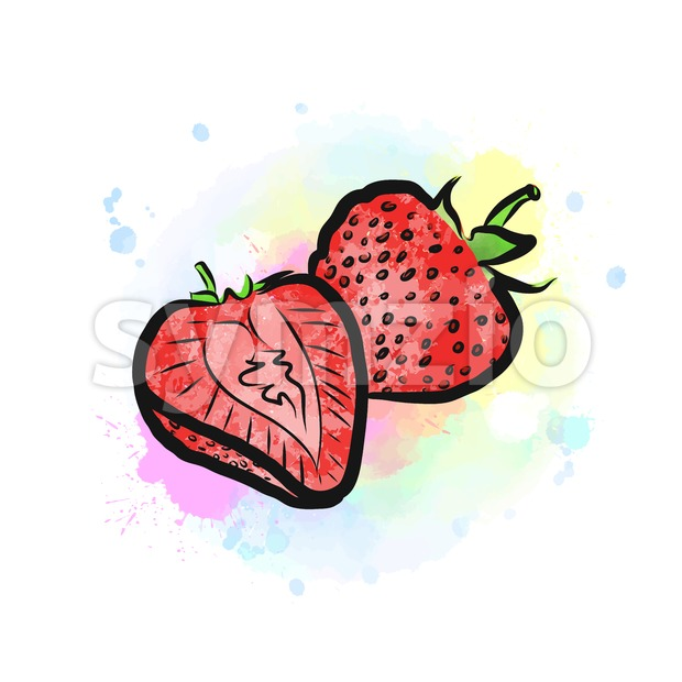 Colored drawing of strawberries Stock Vector