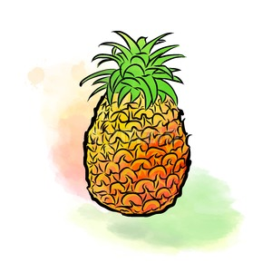 Colored drawing of pineapple Stock Vector