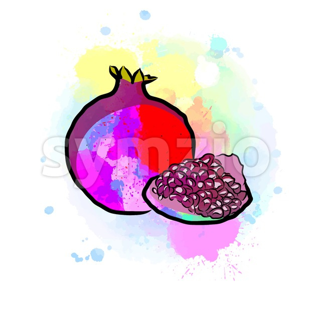 Colored drawing of pomegranate. Fresh design of colorful fruits made in watercolor style. Modern marketing illustration on white background.