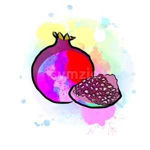 Colored drawing of pomegranate Stock Vector