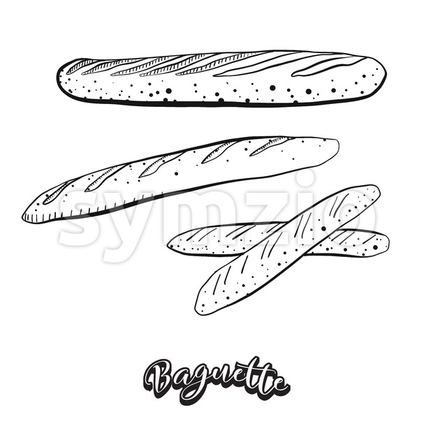 Hand drawn sketch of Baguette food Stock Vector