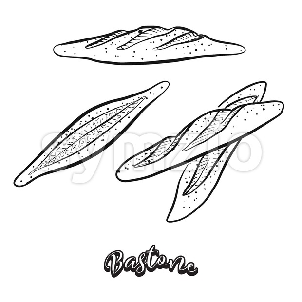 Hand drawn sketch of Bastone bread Stock Vector