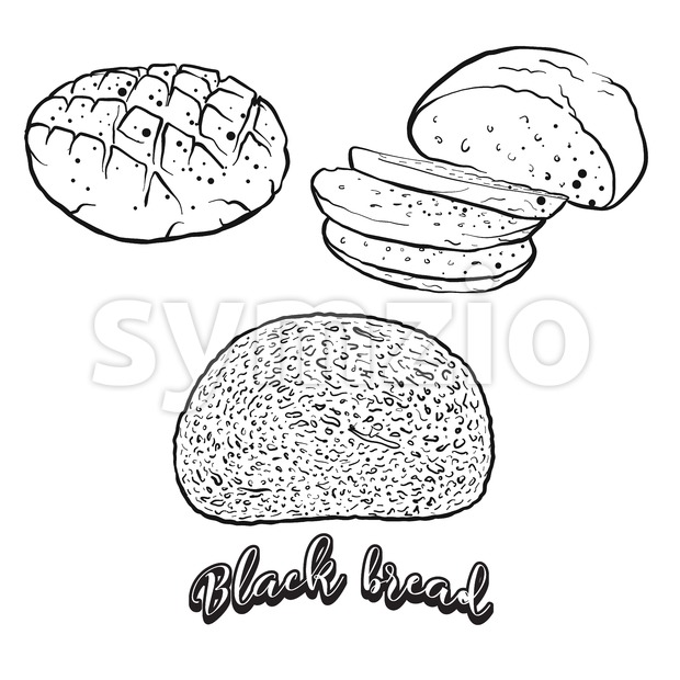 Hand drawn sketch of Black bread bread Stock Vector
