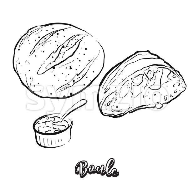 Hand drawn sketch of Boule bread Stock Vector