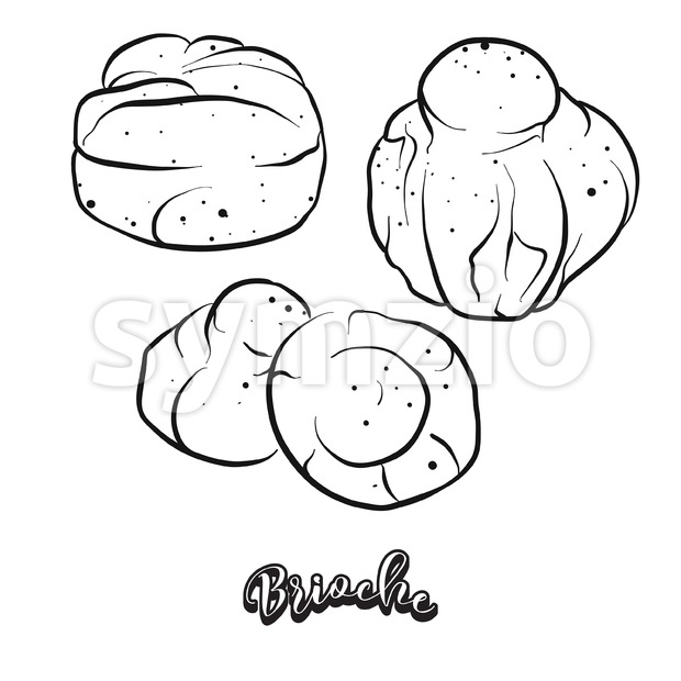 Hand drawn sketch of Brioche bread Stock Vector