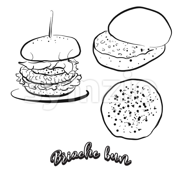 Hand drawn sketch of Brioche bun bread Stock Vector