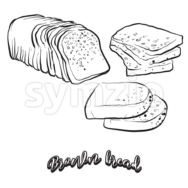 Hand drawn sketch of Brown bread bread. Vector drawing of Rye or wheat bread food, usually known in Ireland. Bread ...