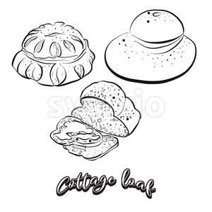 Hand drawn sketch of Cottage loaf bread Stock Vector