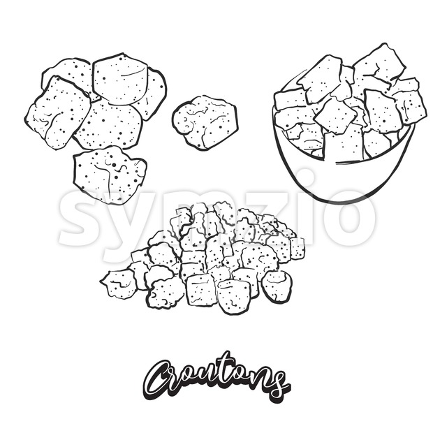 Hand drawn sketch of Croutons bread Stock Vector