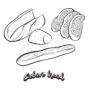 Hand drawn sketch of Cuban bread bread Stock Vector