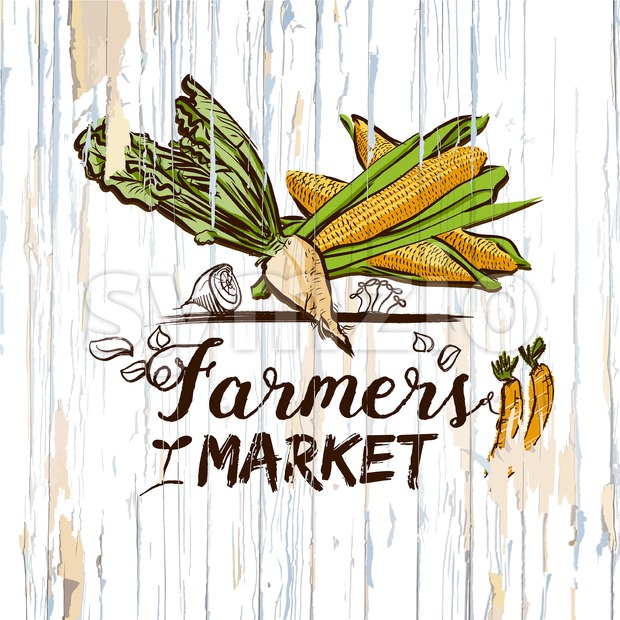 Farmers market illustration on wood. Vector food illustration.