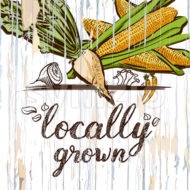 Locally grown illustration on wood. Vector food illustration.