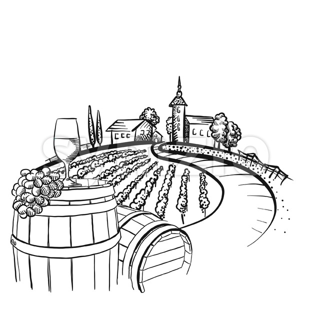 Vineyard barrel and glass drawing, hand-drawn vector food illustration for vine label and social media marketing