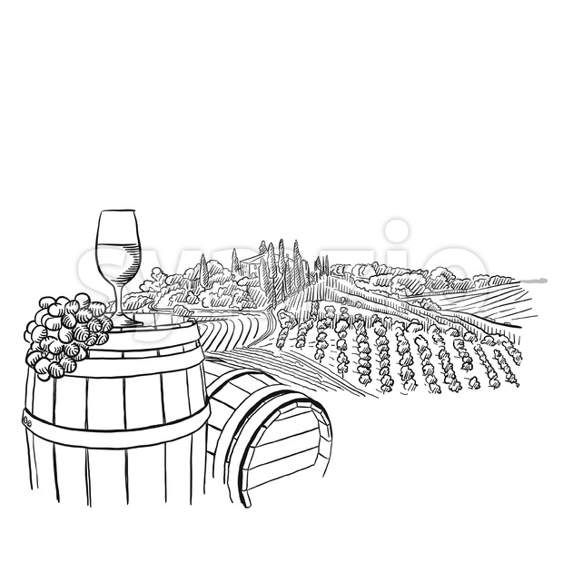vineyard landscape with glass illustration Stock Vector