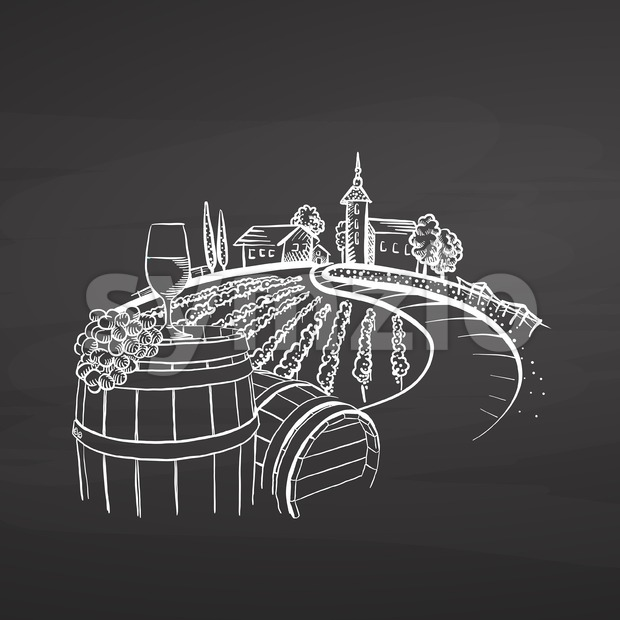 Vineyard drawing on chalkboard Stock Vector