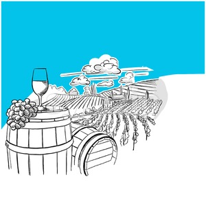 Vineyard landscape with glass drawing Stock Vector