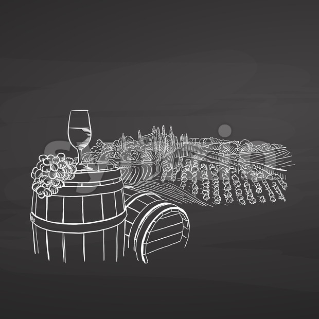 Wine illustration on chalkboard, hand-drawn vector food illustration for vine label and social media marketing