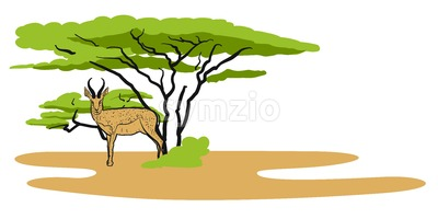 Antelope in savanna, Illustration Stock Vector